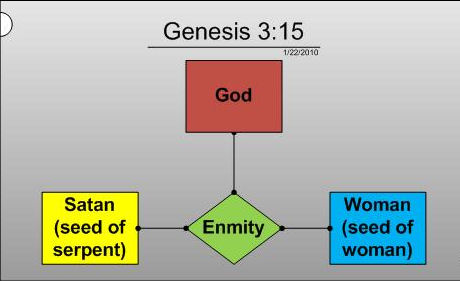 What do we learn about the relationship between the man and the woman in Genesis?