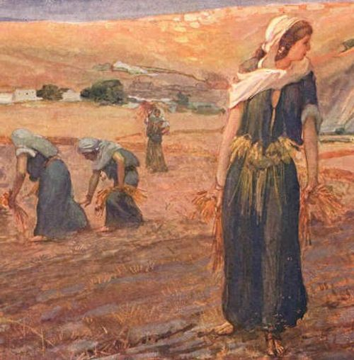 The Book of Ruth, An in Depth Study of the Church and ...