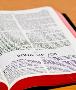 Book of Job - Read, Study Bible Verses Online
