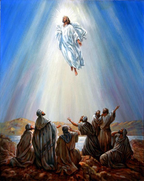 [Image: jesus-taken-up-into-heaven.jpg]