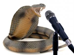 Snake-speak-300x224