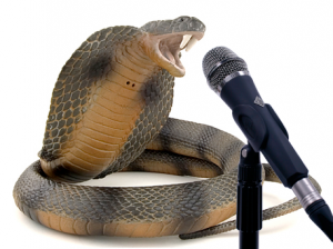 [Image: snake-speak-300x224.png?w=604]