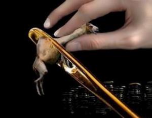 camel_needle